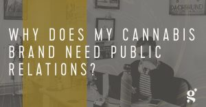 a Grasslands Agency employee answering why does my cannabis brand need public relations